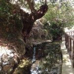 La source eau potable eau agricole