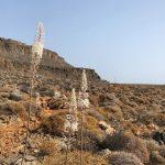 route de randonnée dans la vallée des morts